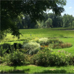 WillowPond_grounds