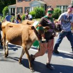 2019 Strolling of the Heifers