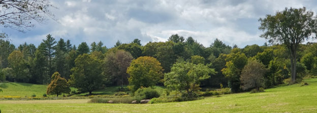 09/10/19 Foliage near Taylor Farm in Londonderry, VT by Renee-Marie Smith