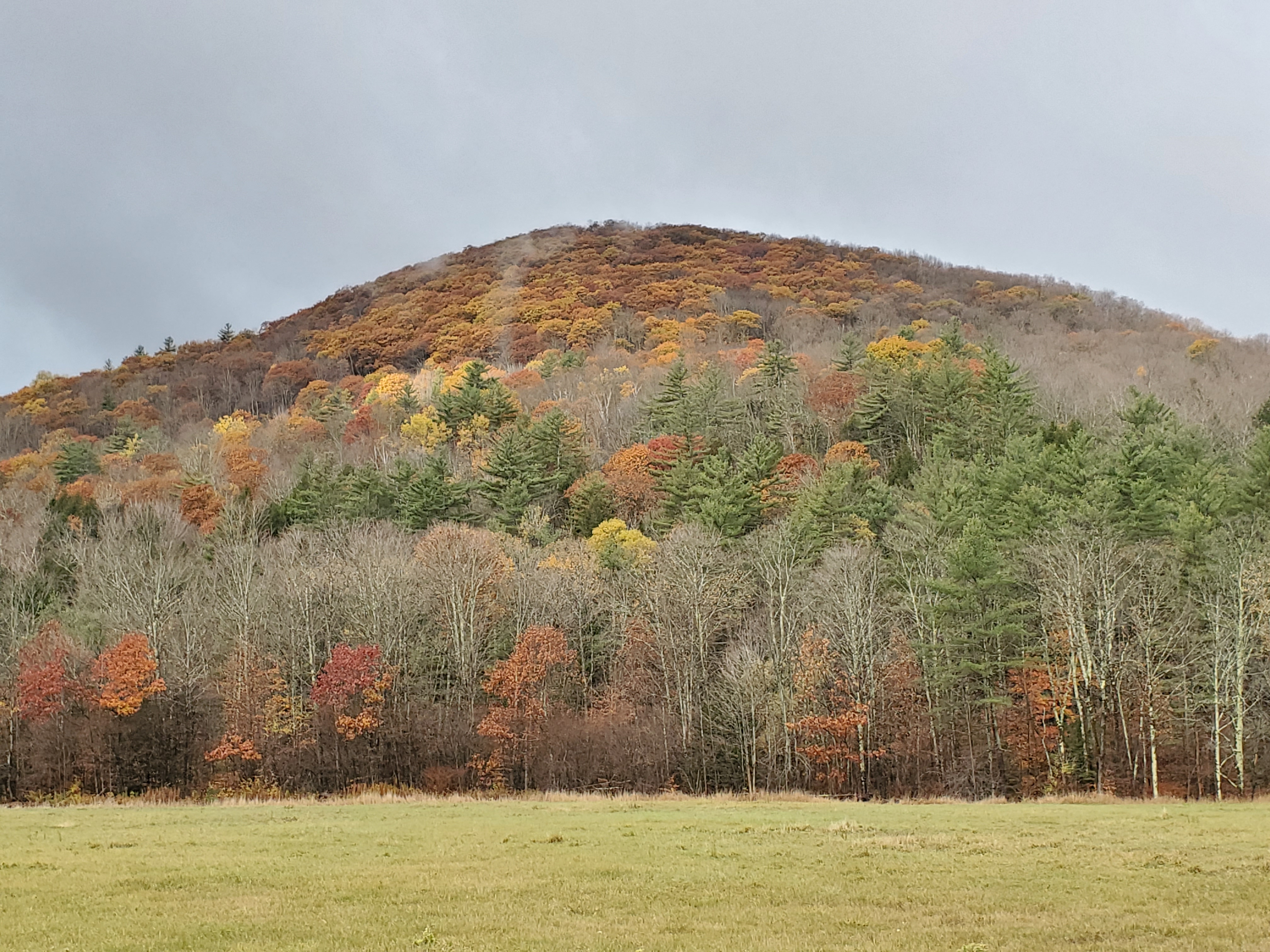 2019/10/23 - End of Foliage Season - by Renee-Marie Smith