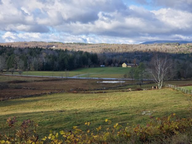 2019/10/23 - End of Foliage Season, near Weston, VT - by Renee-Marie Smith