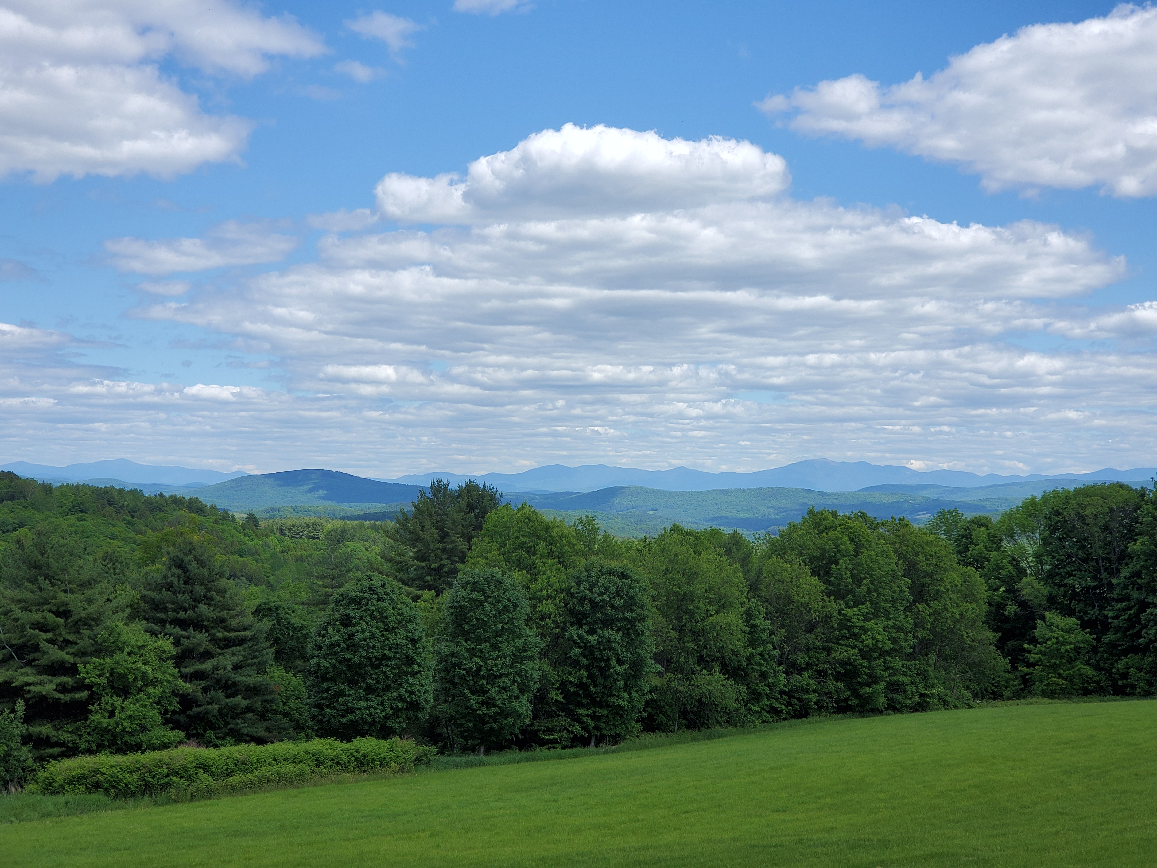 Scenic View - Danville, VT - Renee-Marie T Smith