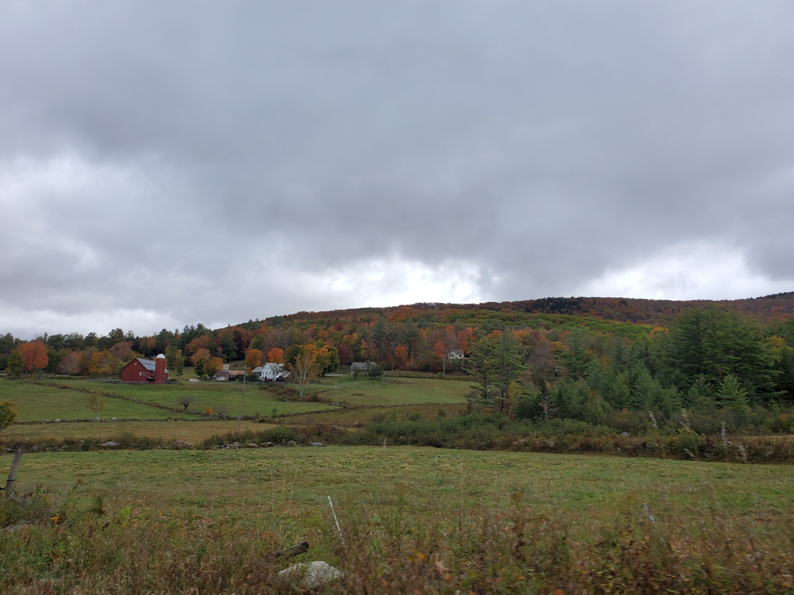 Foliage in Weston, VT - 2020-09-30